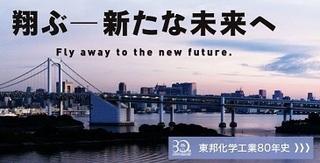 東邦化学工業 会社HP.JPG